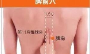 脾俞和肾俞的准确位置图作用